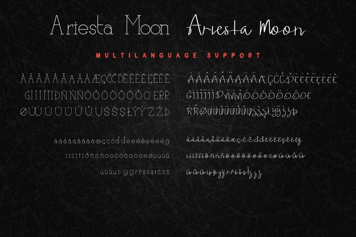 Ariesta Moon example image 8