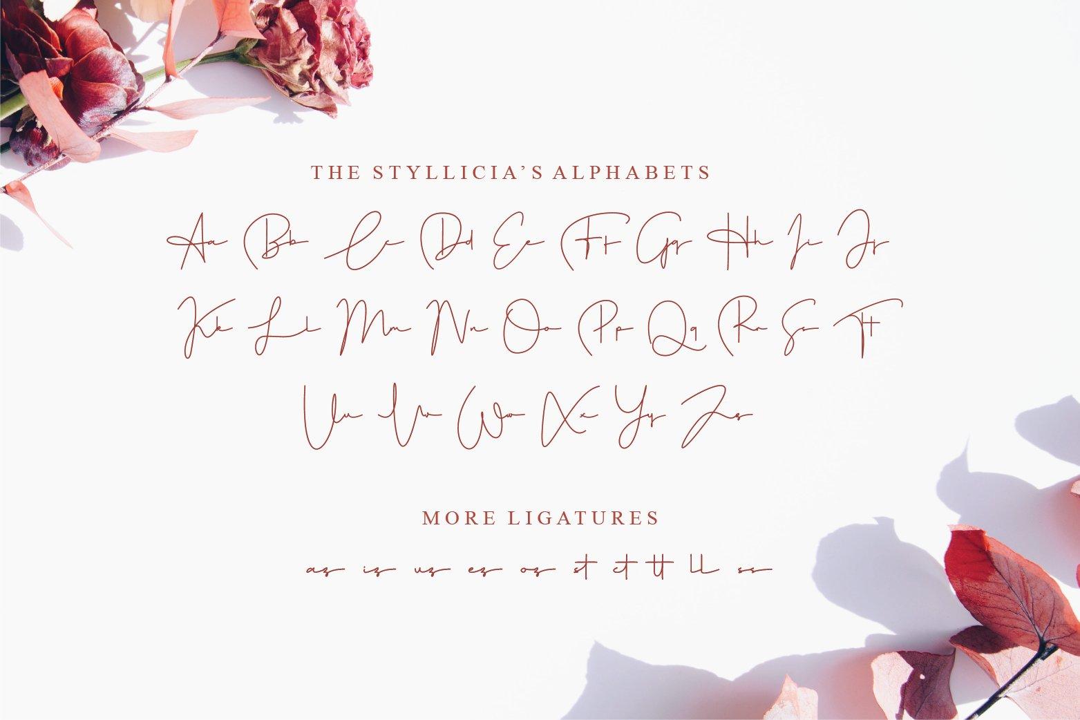 Styllicia example image 7
