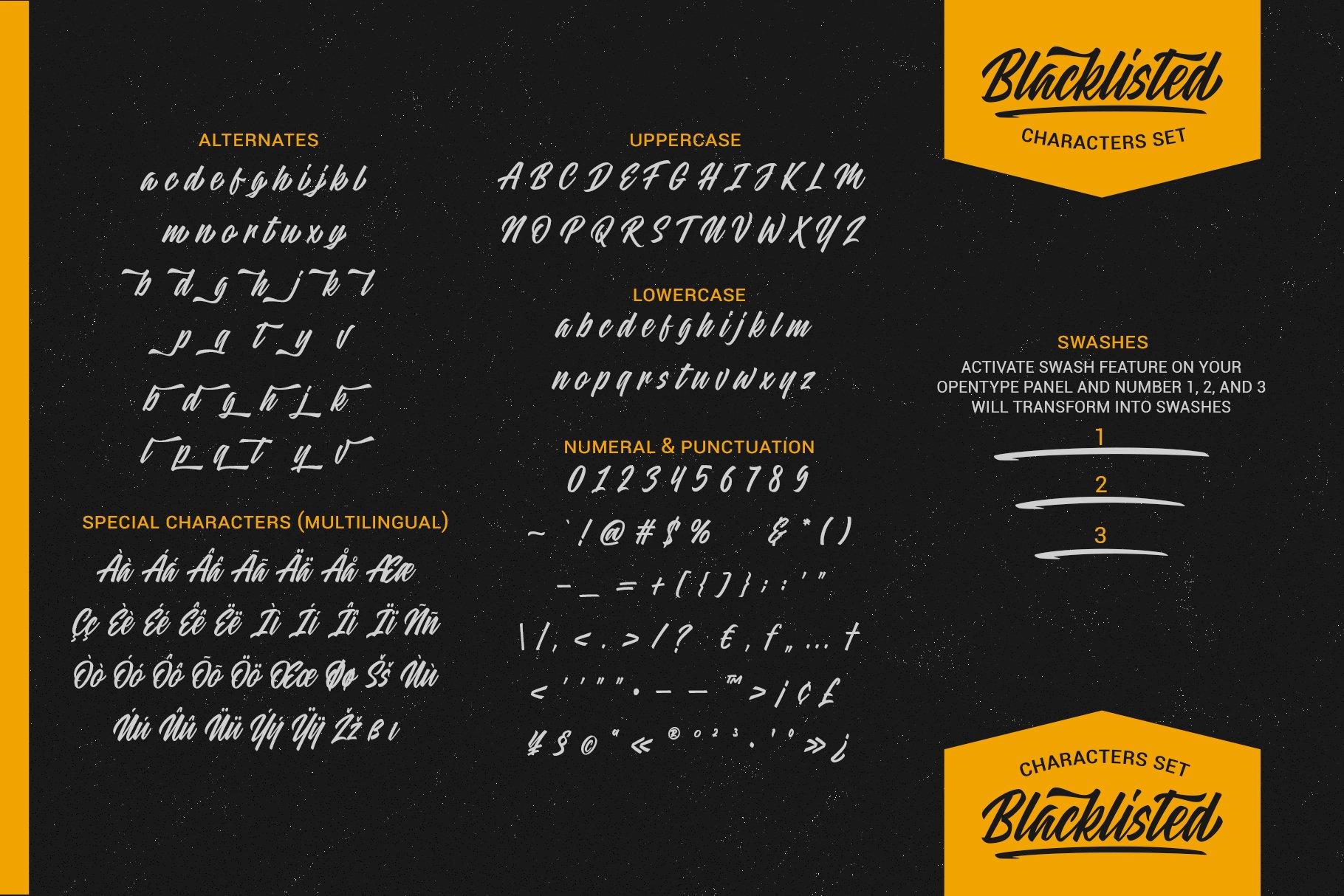 Blacklisted - Vintage Script Font example image 9