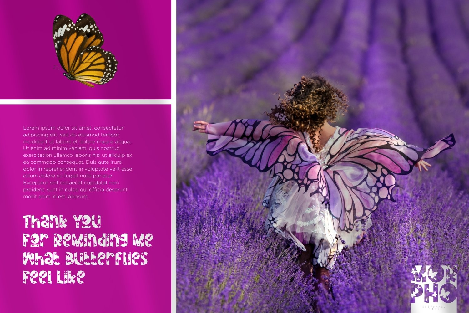 Monarch - Butterfly Display Font example image 4