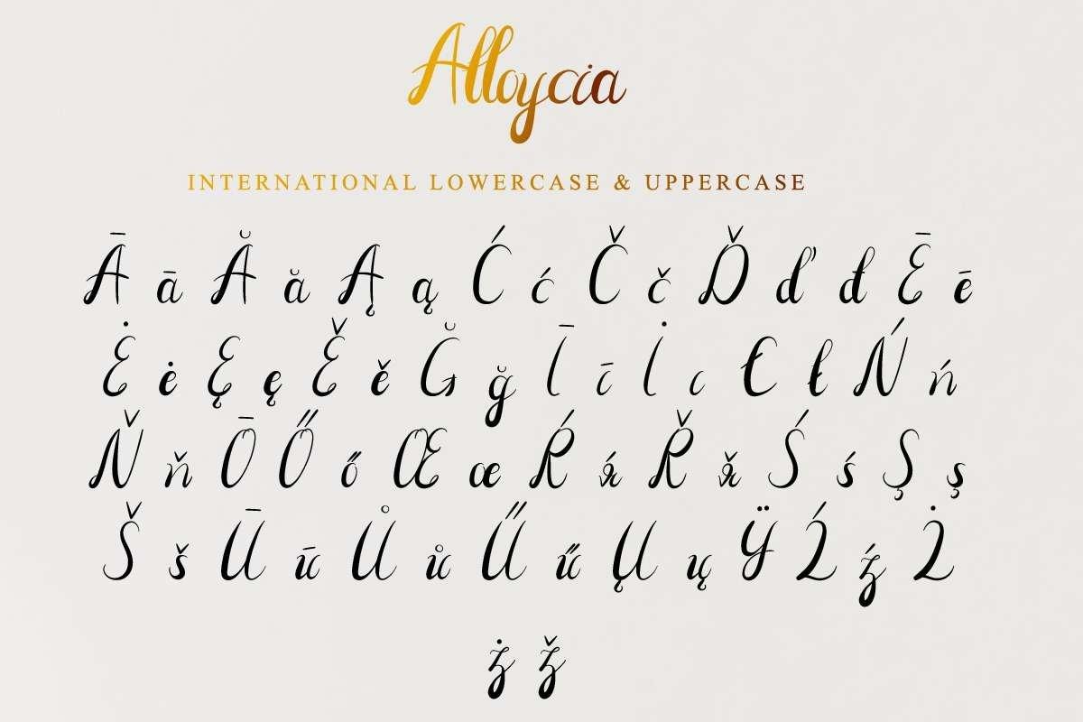 Alloycia example image 6