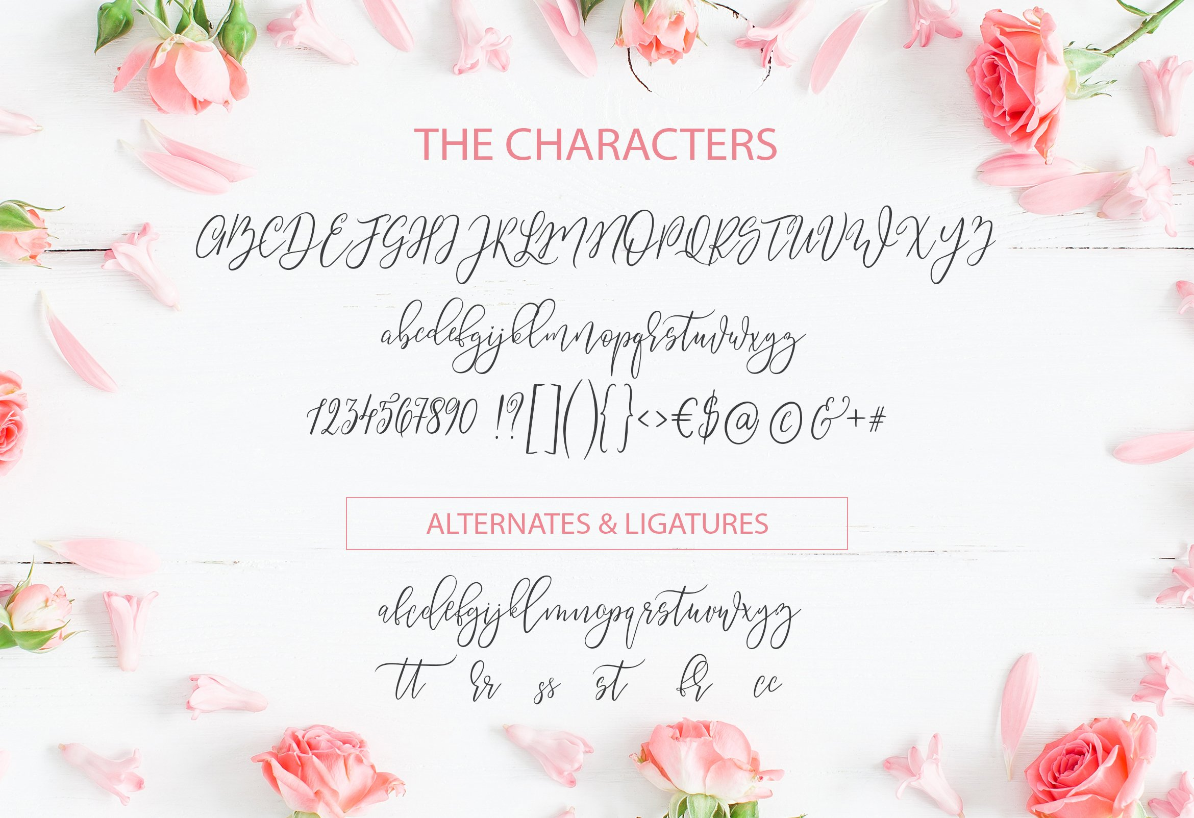 Summery Handwritten Calligraphy Font example image 5