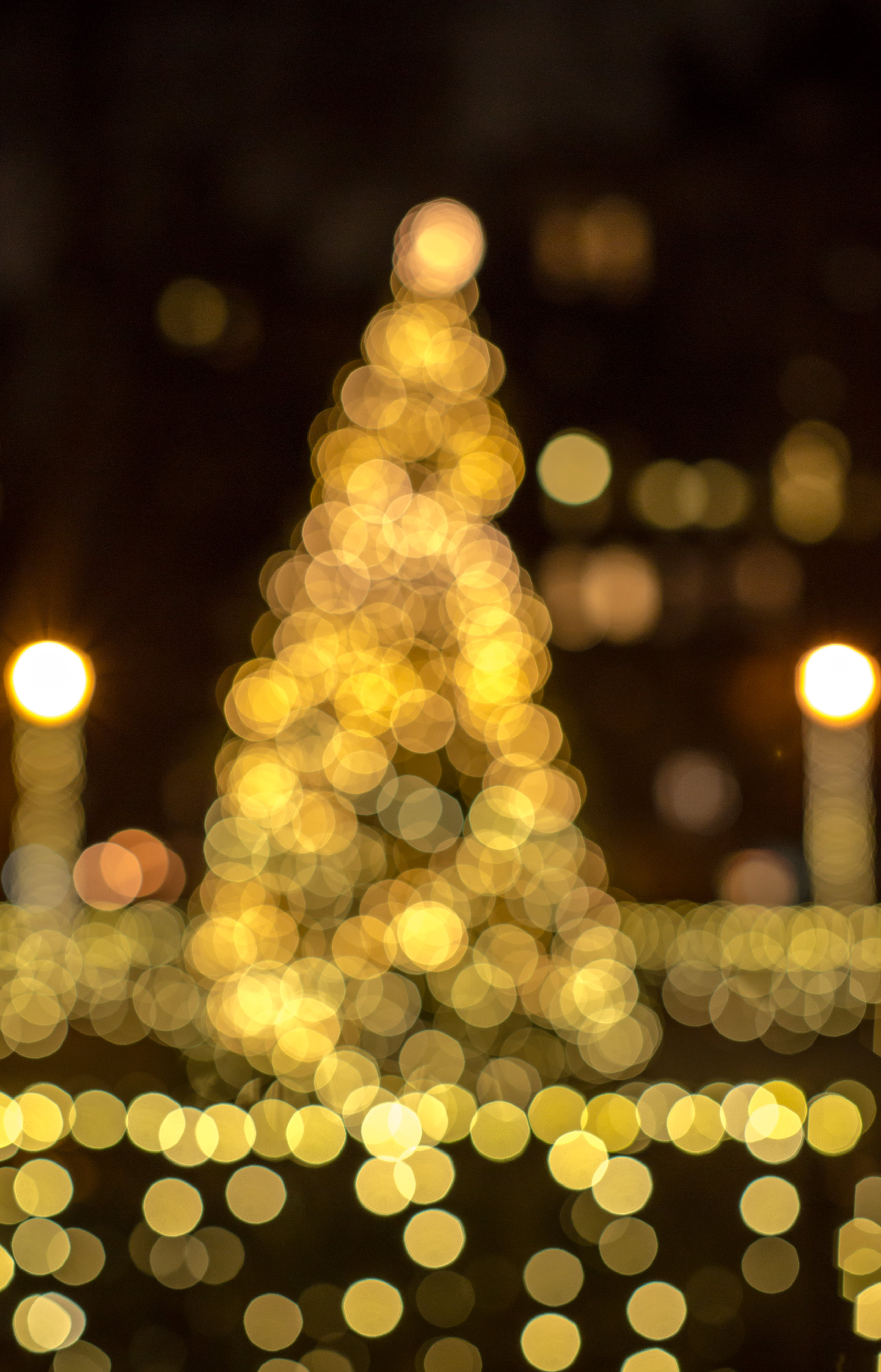 Blurred tree in lights  example image 1