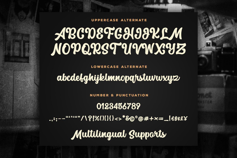 The Macksen Font - Bold Script Font example image 11