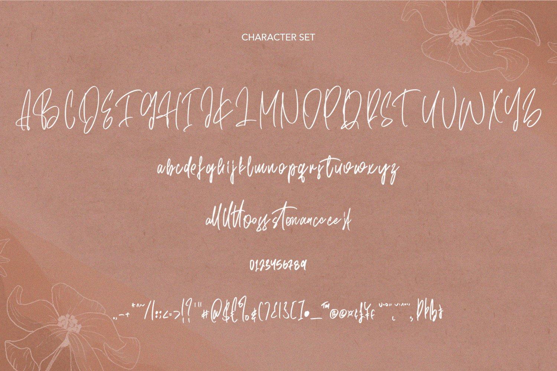 Buttonhook - Modern Script Font example image 6