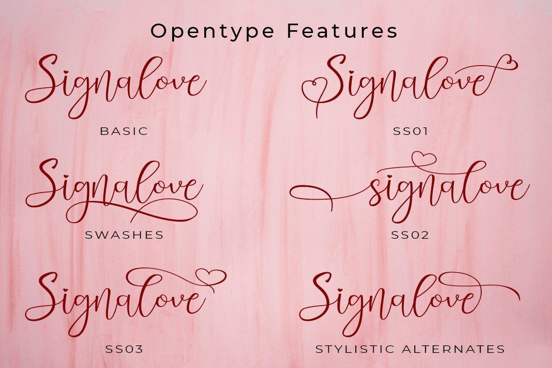 Signalove | Modern Calligraphy Typeface example image 10