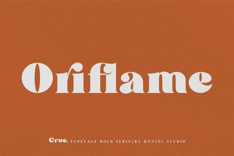 Croc. Typeface Bold Serif example image 7