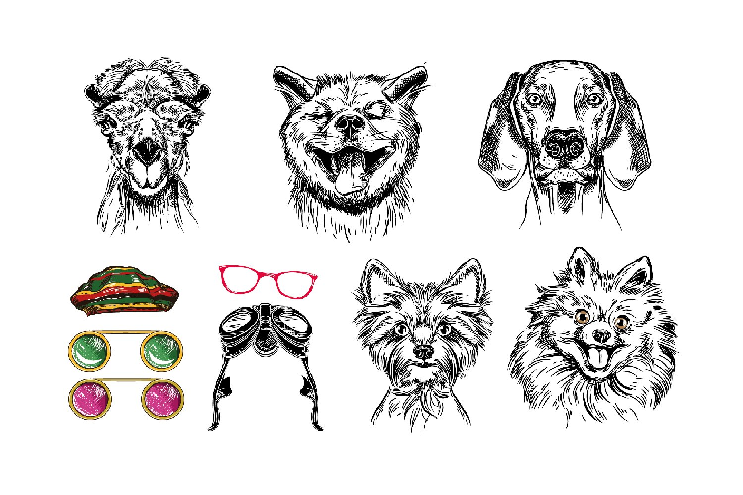 Animals with stylish accessories example image 2