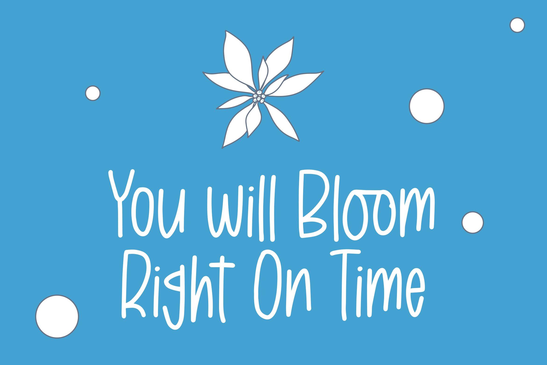 BabyBoom - Fancy Font example image 2