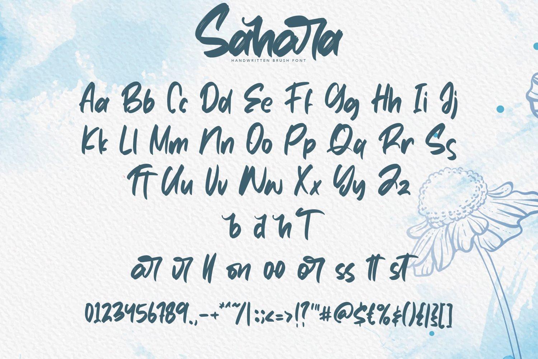 Sahara - Script Fonts example image 3
