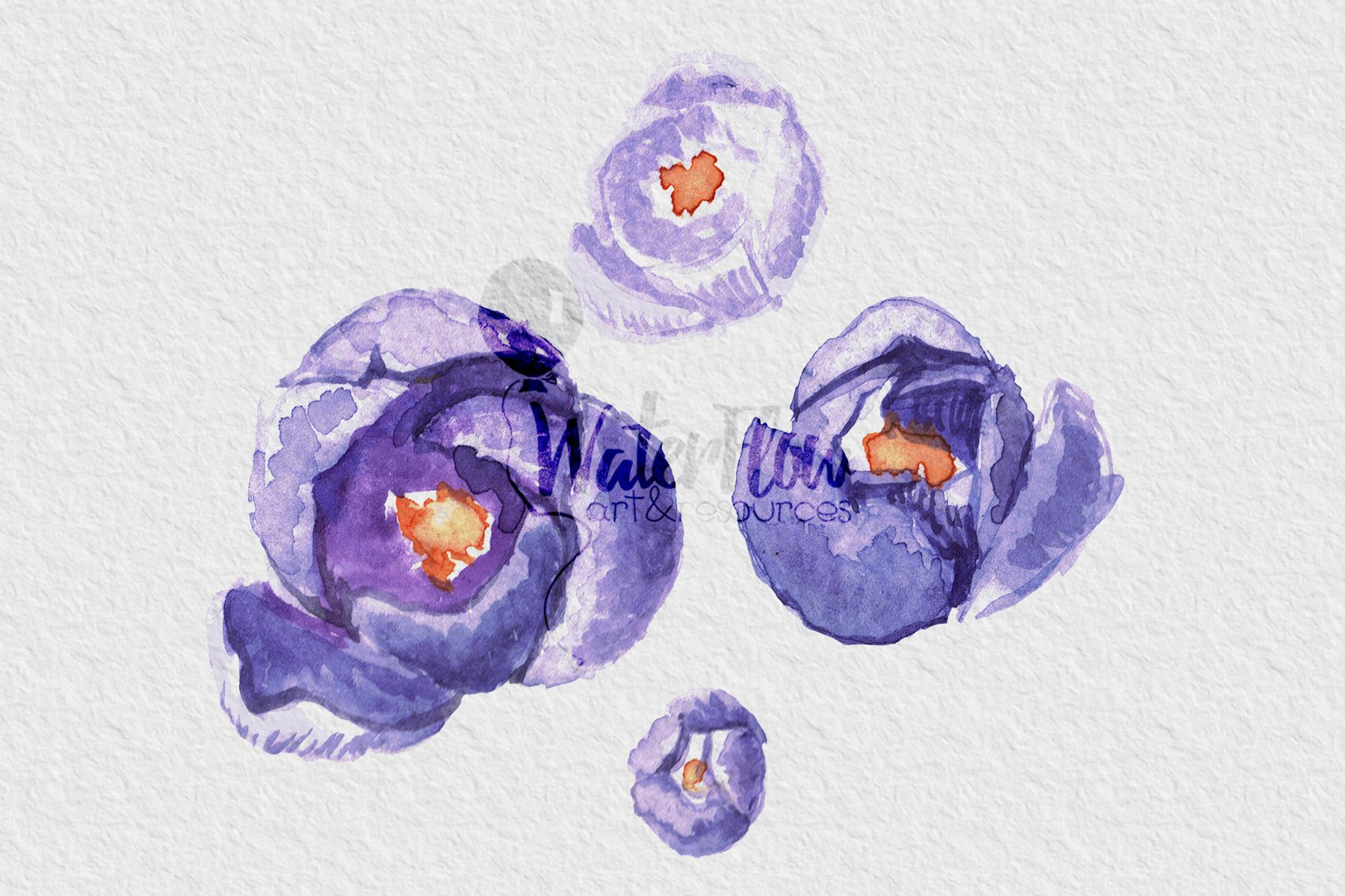 """Watercolor Set of Illustrations """"Blooming Garden"""" - 7 PNGs example image 2"""