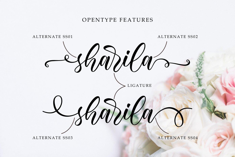 Sharila example image 2