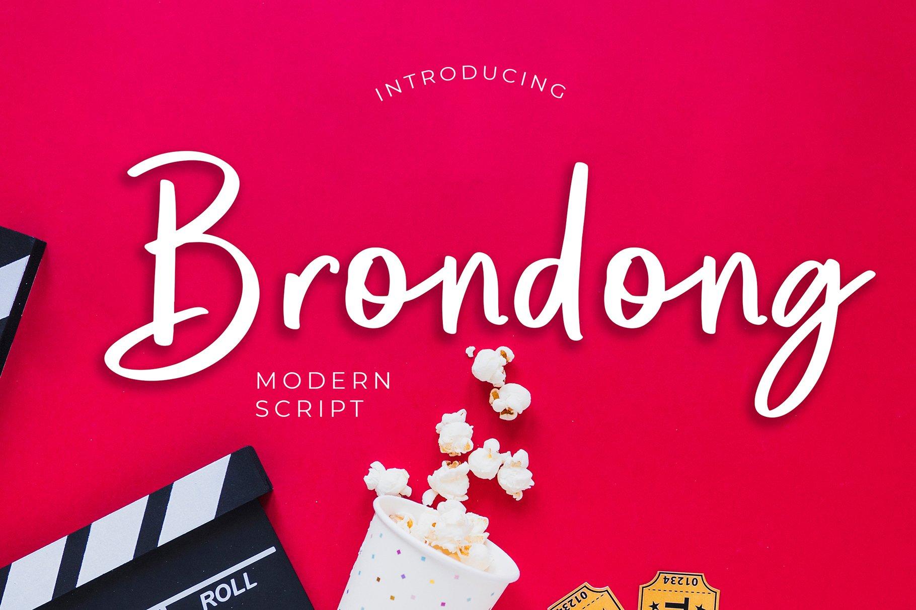 Brondong Modern Script Font example image 1