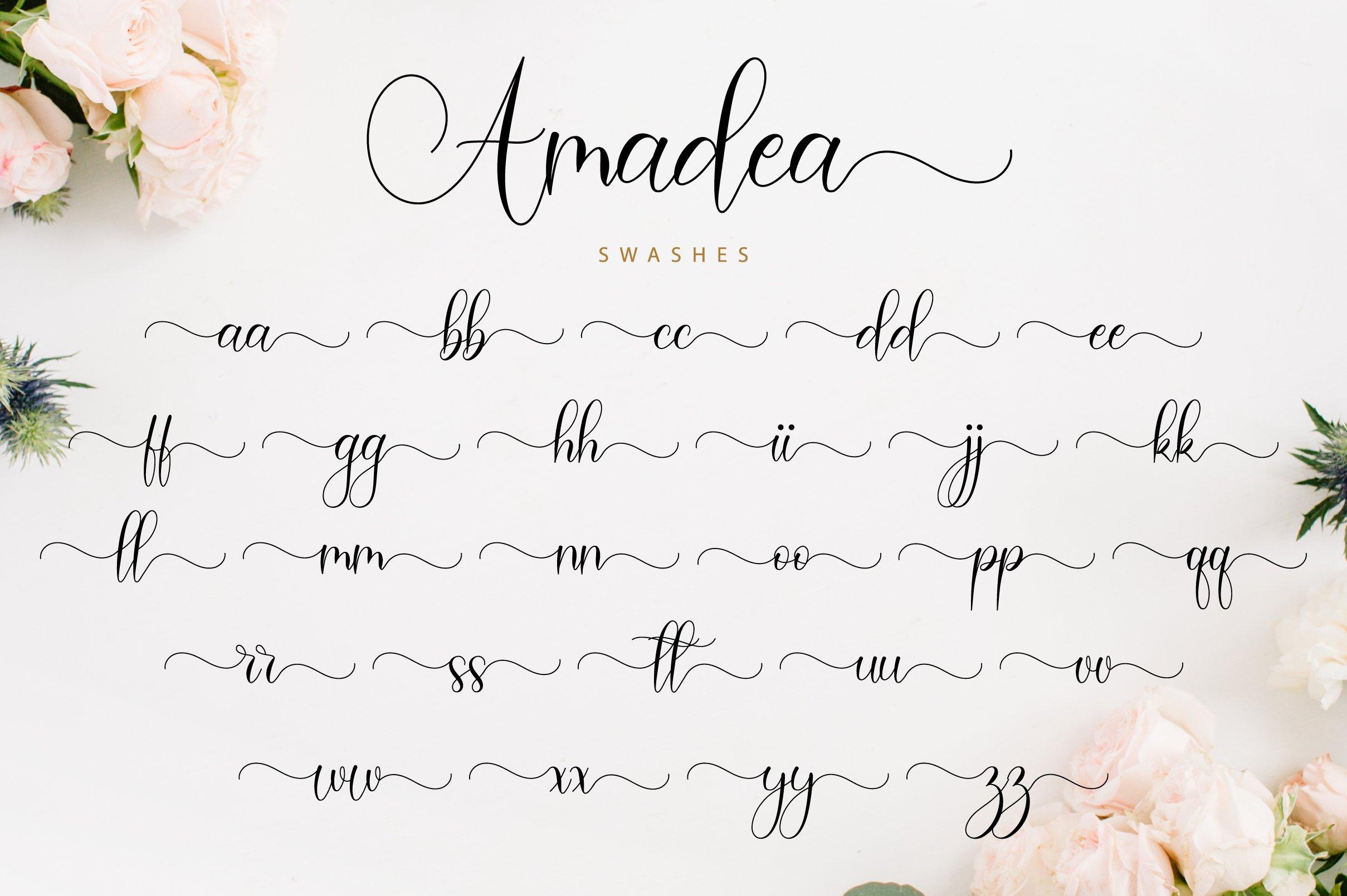 Amadea Script example image 12