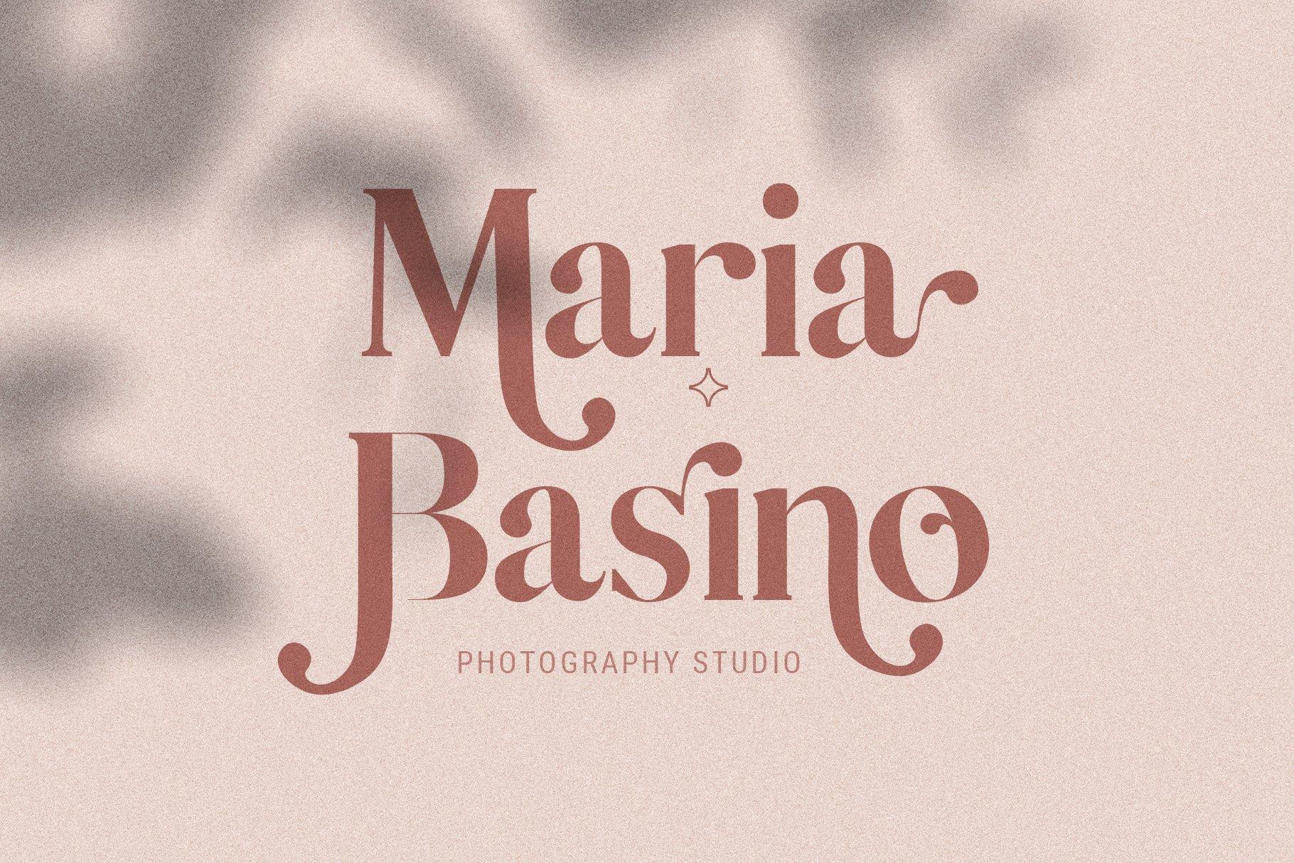 Vicky Christina - Chic & Stylish Ligature Serif Font example image 23
