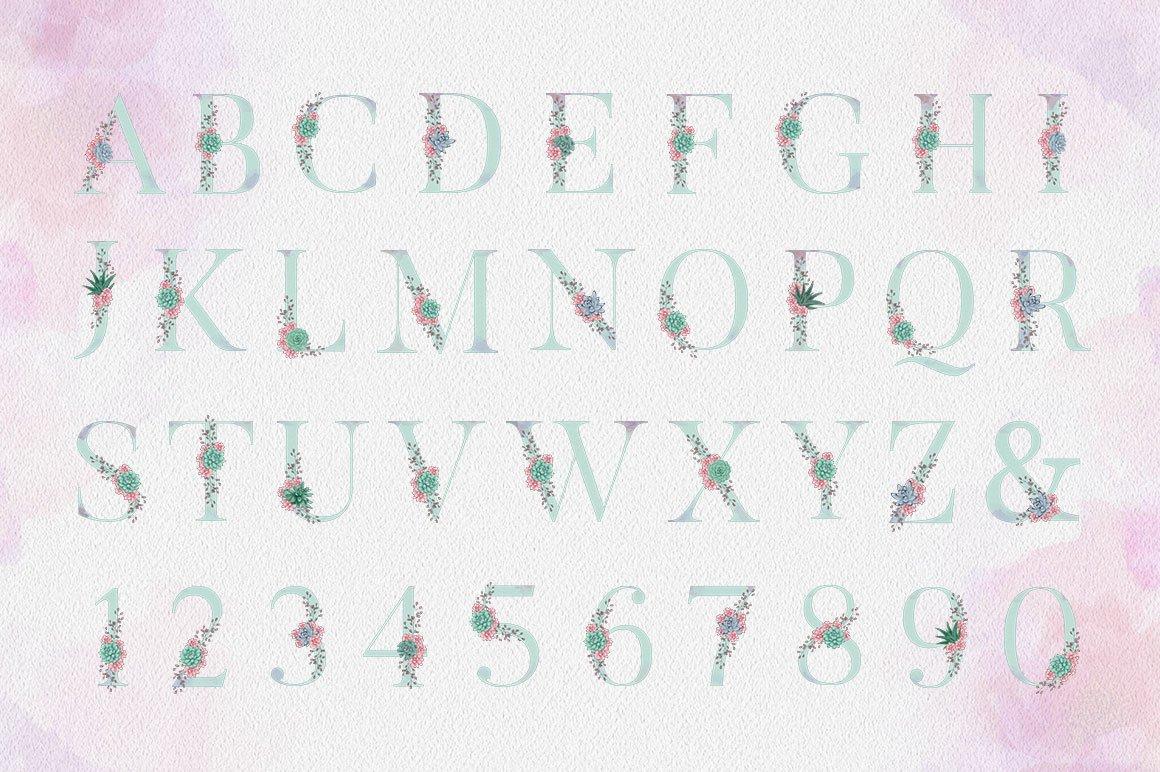 Succulent Alphabet Letters example image 2