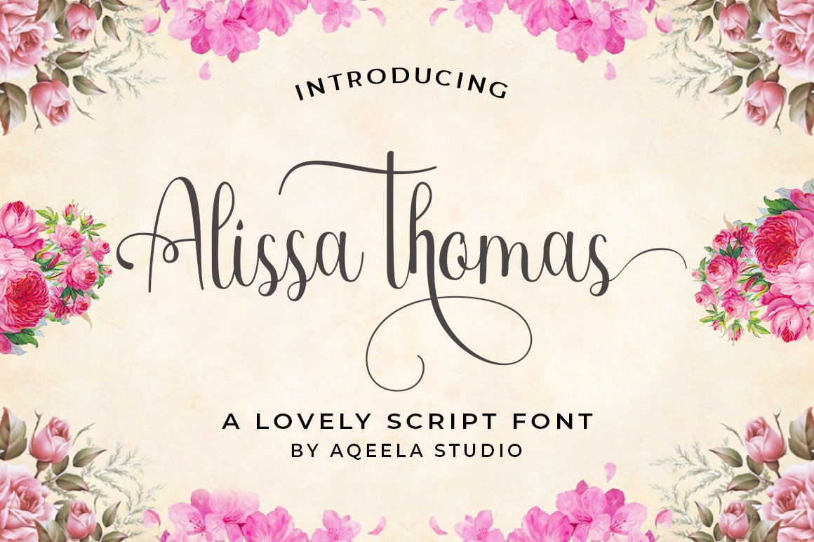 28 Fancy Script Fonts example image 4