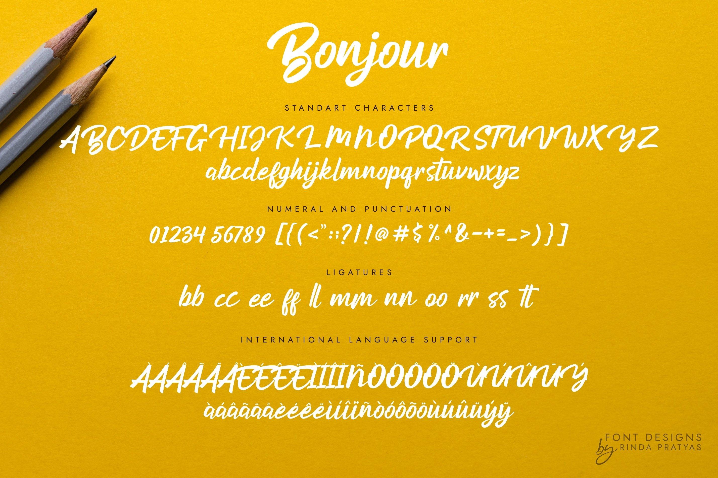 Bonjour Modern Script Font example image 5