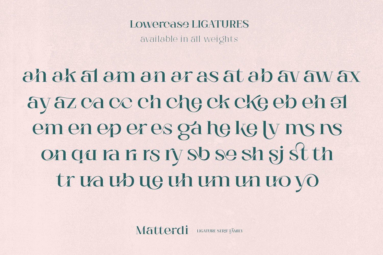 Matterdi | Hi-fashion ligature font example image 8