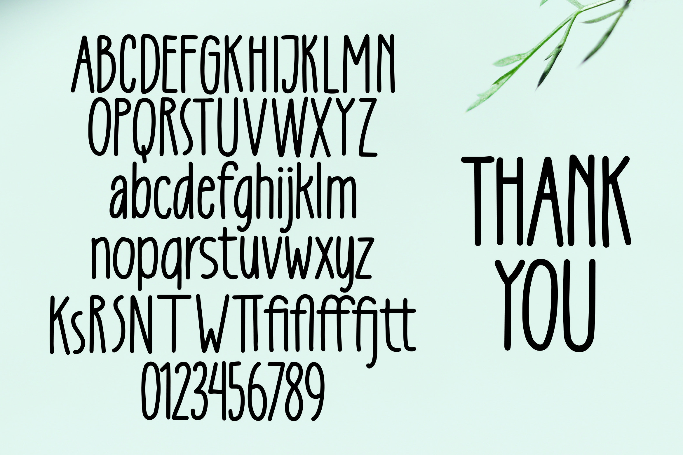 Curtains -Tall Handlettered Font example image 5