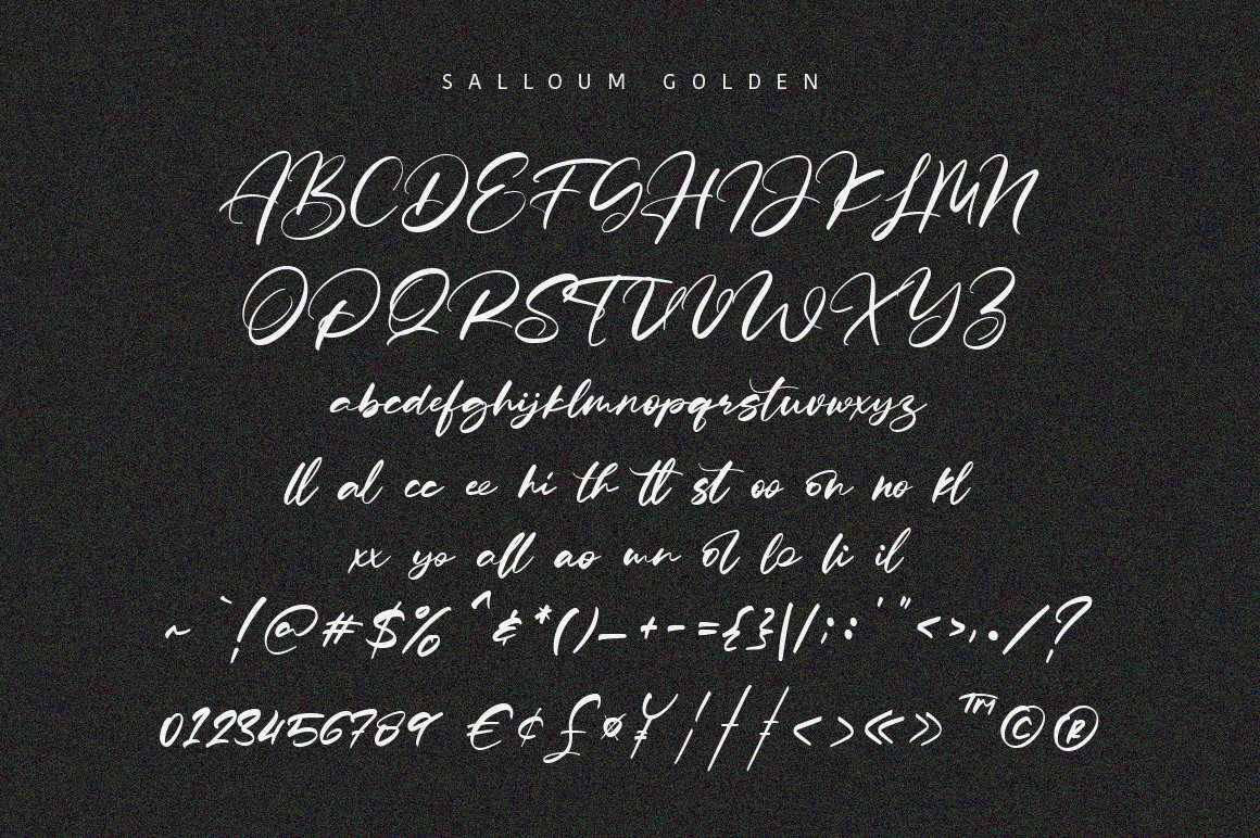 Salloum Golden Font Duo example image 8