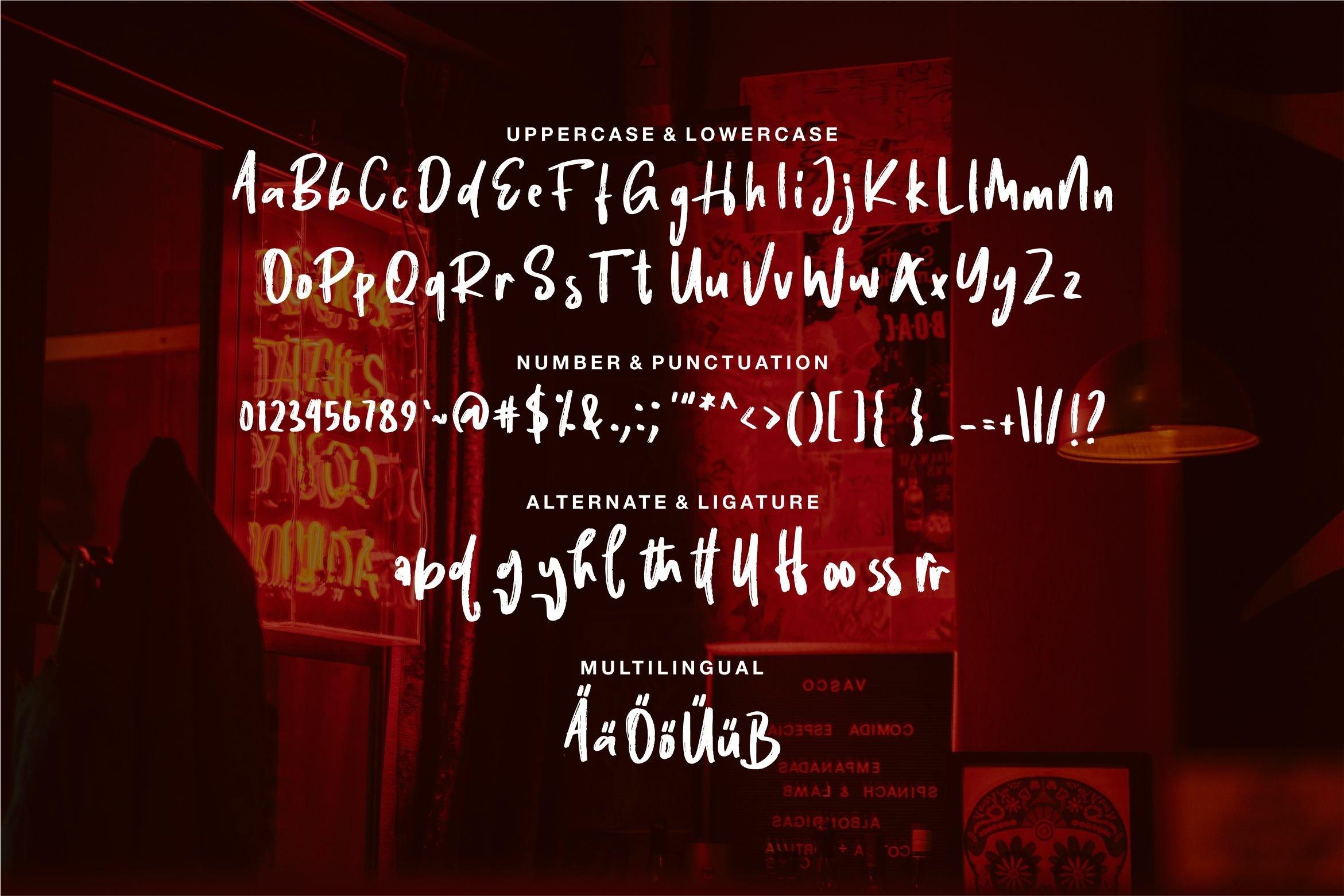 Daniyel - Stylish Brush Font example image 5