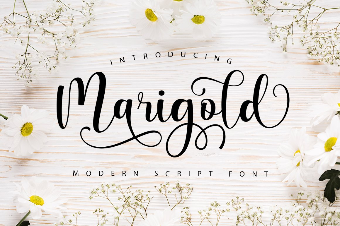 Marigold Script example image 1