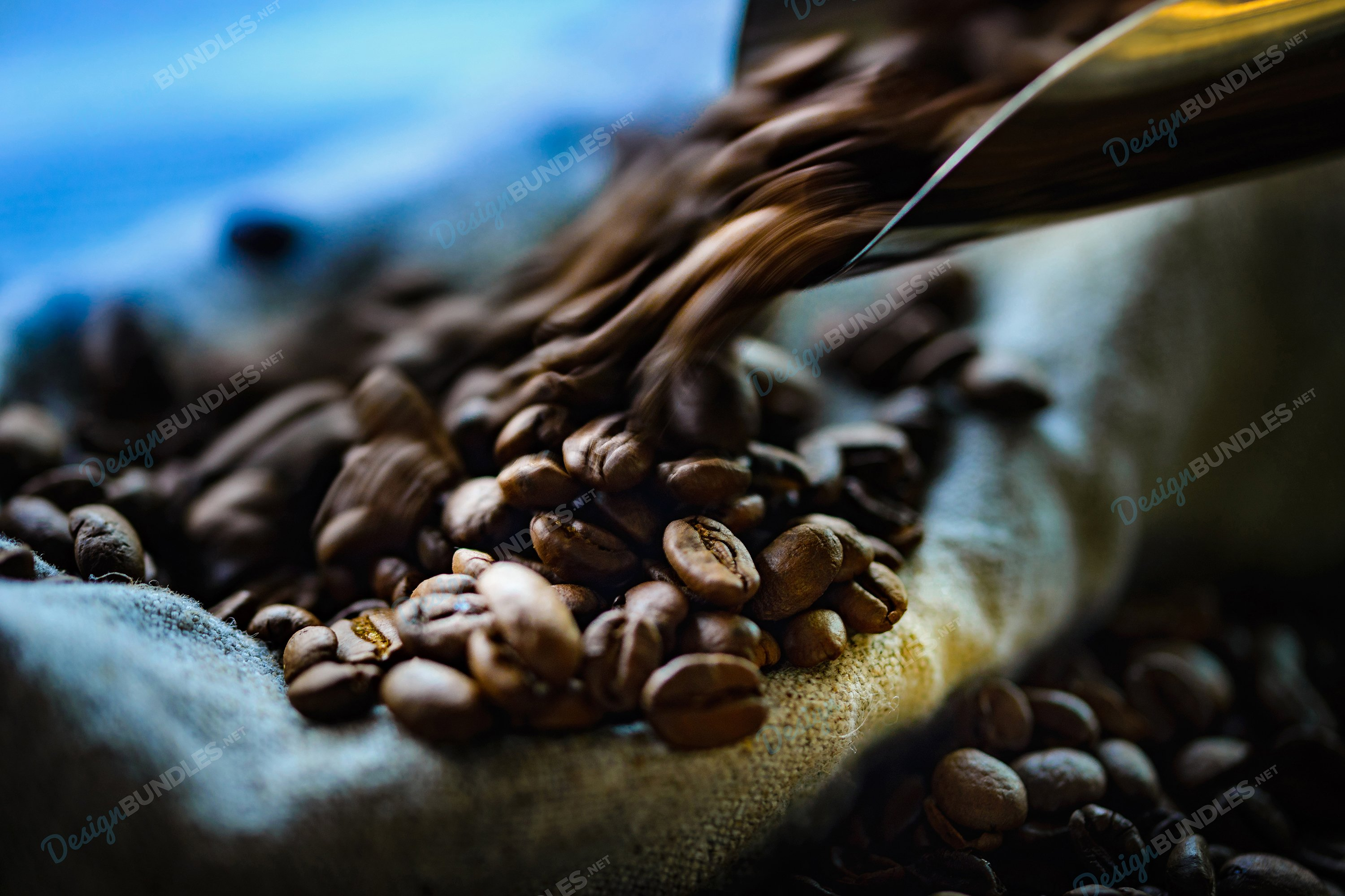 Stock Photo - Close up of roasted coffee beans in sack bag example image 1