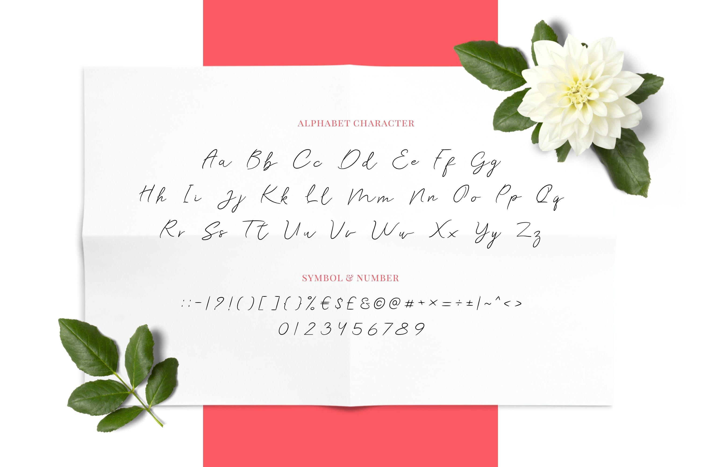 Rei Biensa - Casual Signature Script Typeface example image 3