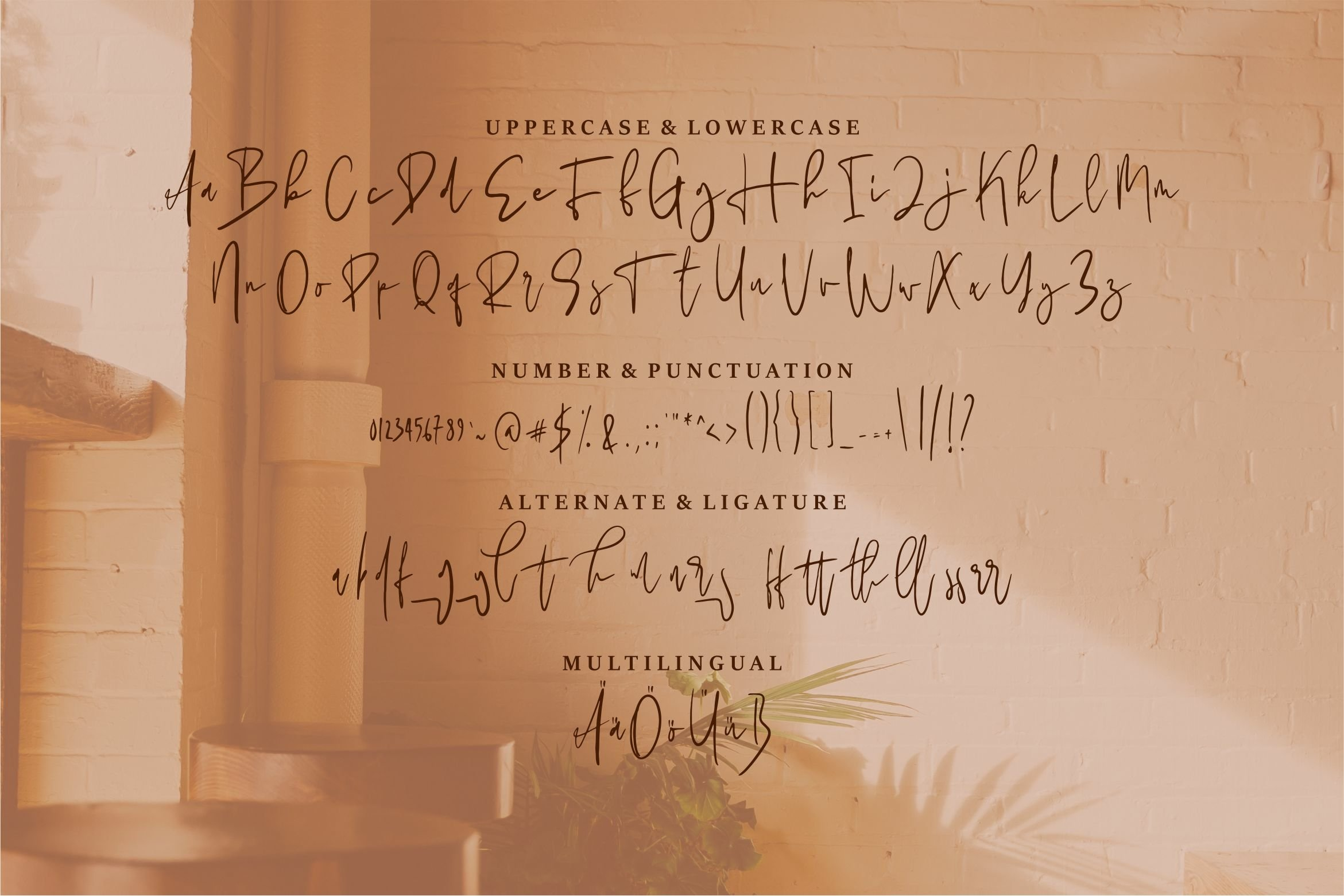 Charlotte - A Beauty Signature Font example image 4