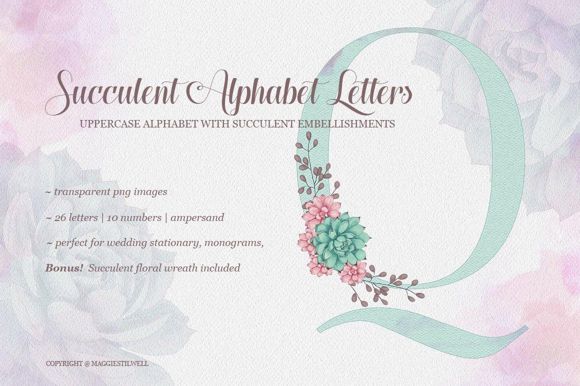Succulent Alphabet Letters example image 1