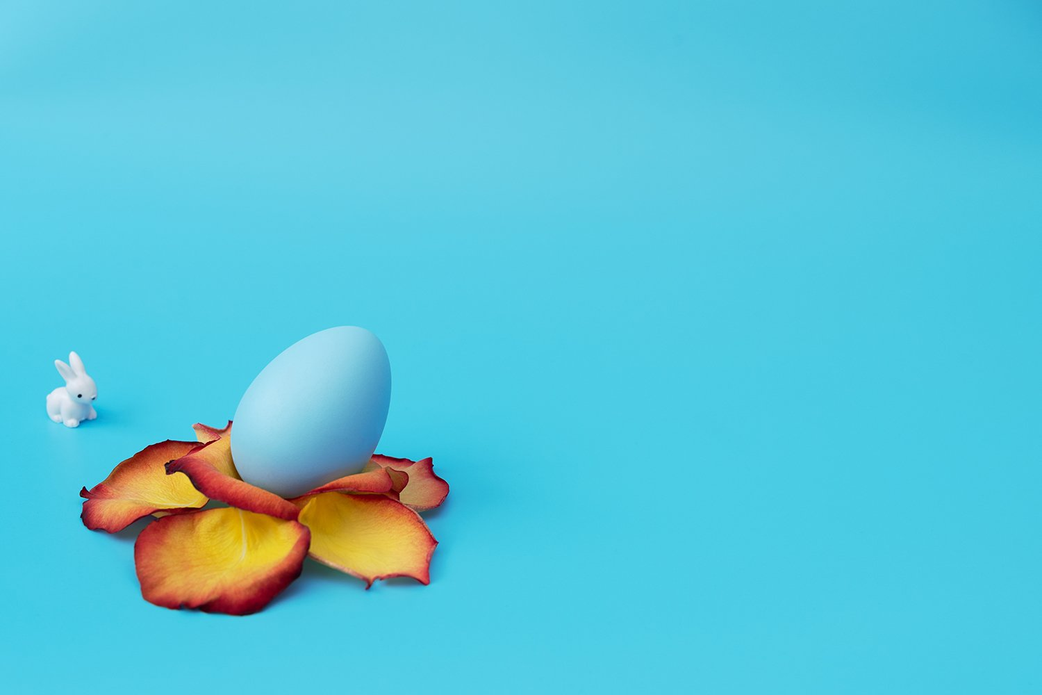 Blue Easter egg stands in yellow flower made of rose petals example image 1