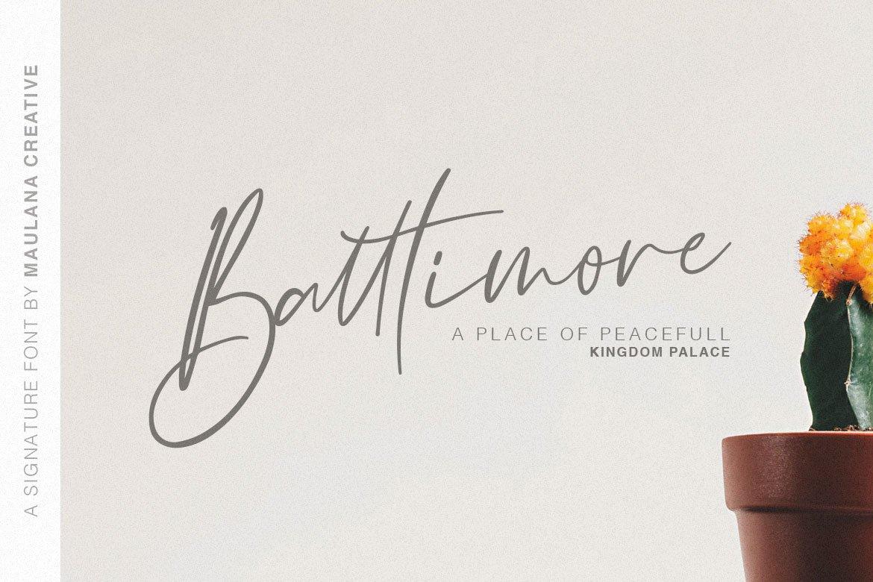 Galgadot Signature Brush Font example image 2
