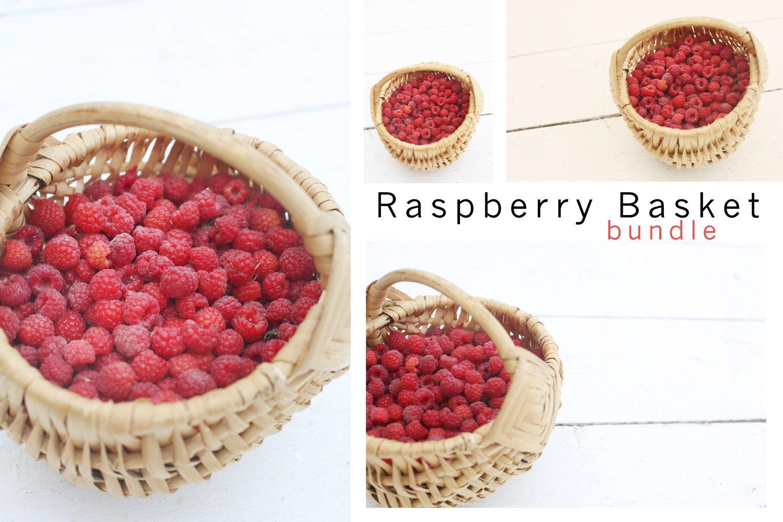 Raspberry Busket Bundle example image 1