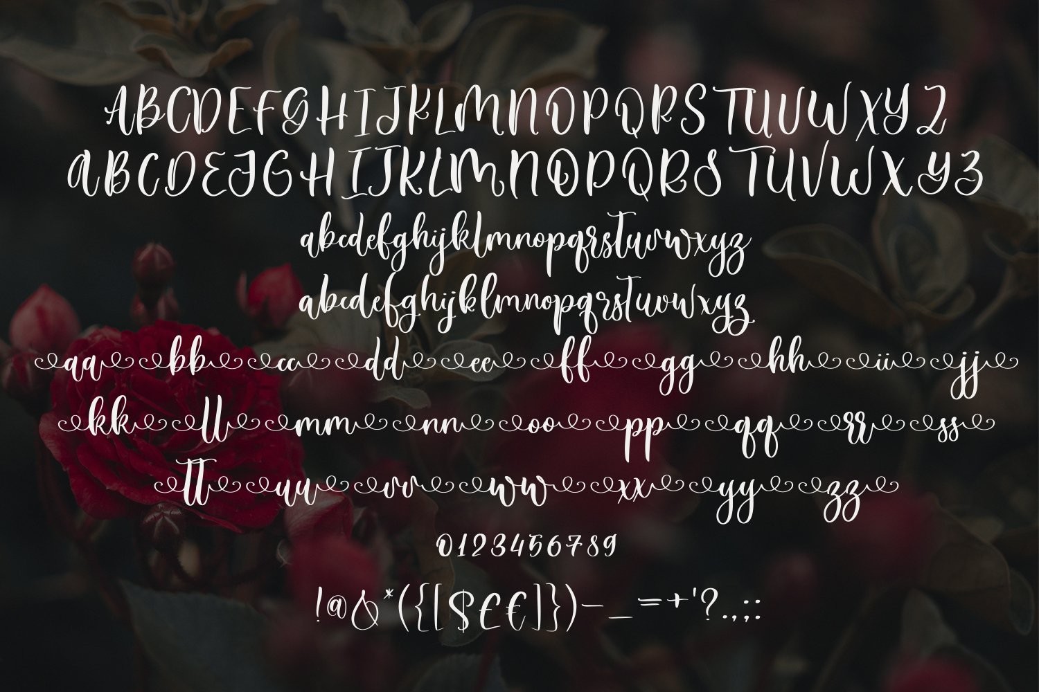 Rose Tea Script Font with swashes example image 5