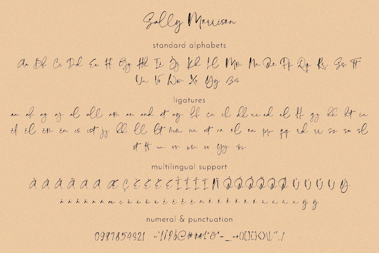 Sally Morrison Script & Serif example image 21