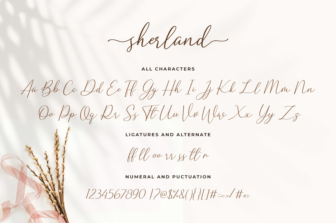 Sharland Luxury Script example image 14