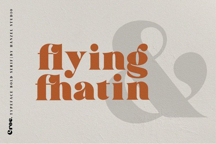 Croc. Typeface Bold Serif example image 6