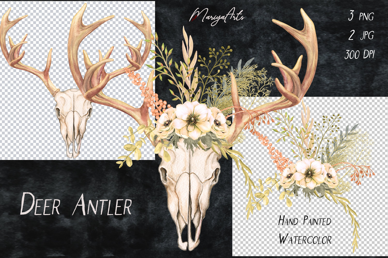 Deer Antlers and Skull, Field Flowers, Watercolor Clipart example image 3