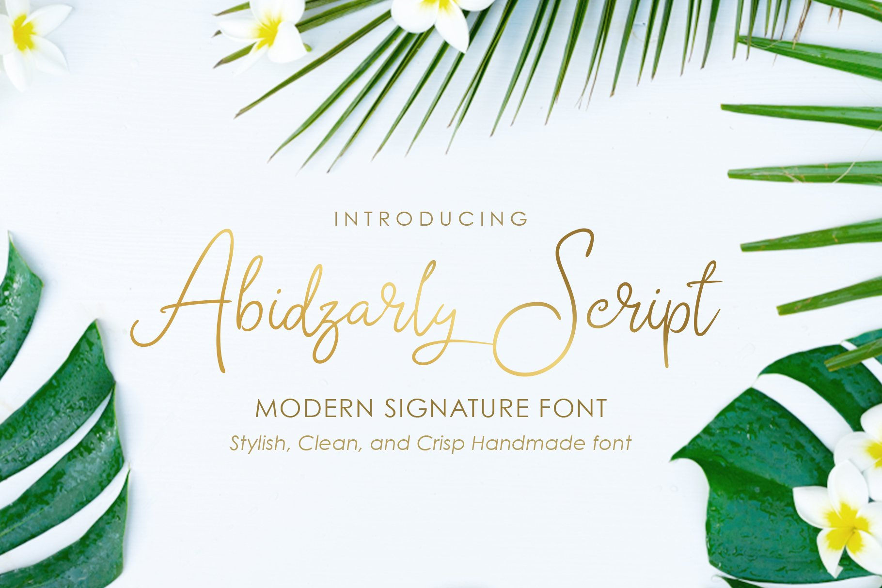 Abidzarly Script example image 1