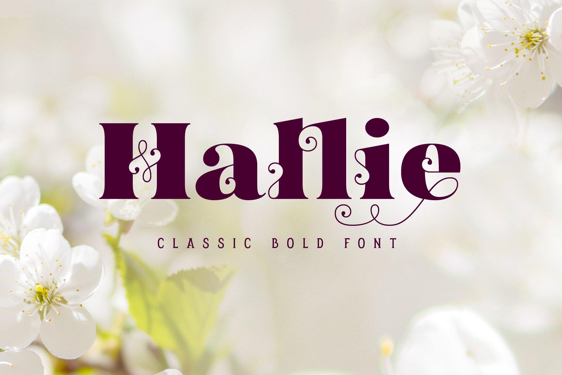 Hallie - Bold Classic Font example image 1