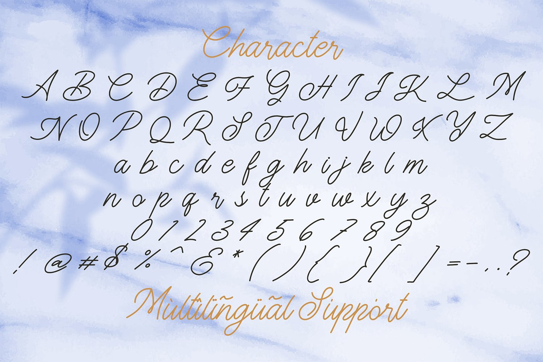 The Gallery - Monoline Script Font example image 12