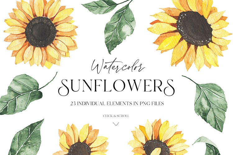 Watercolor Sunflowers collection example image 16