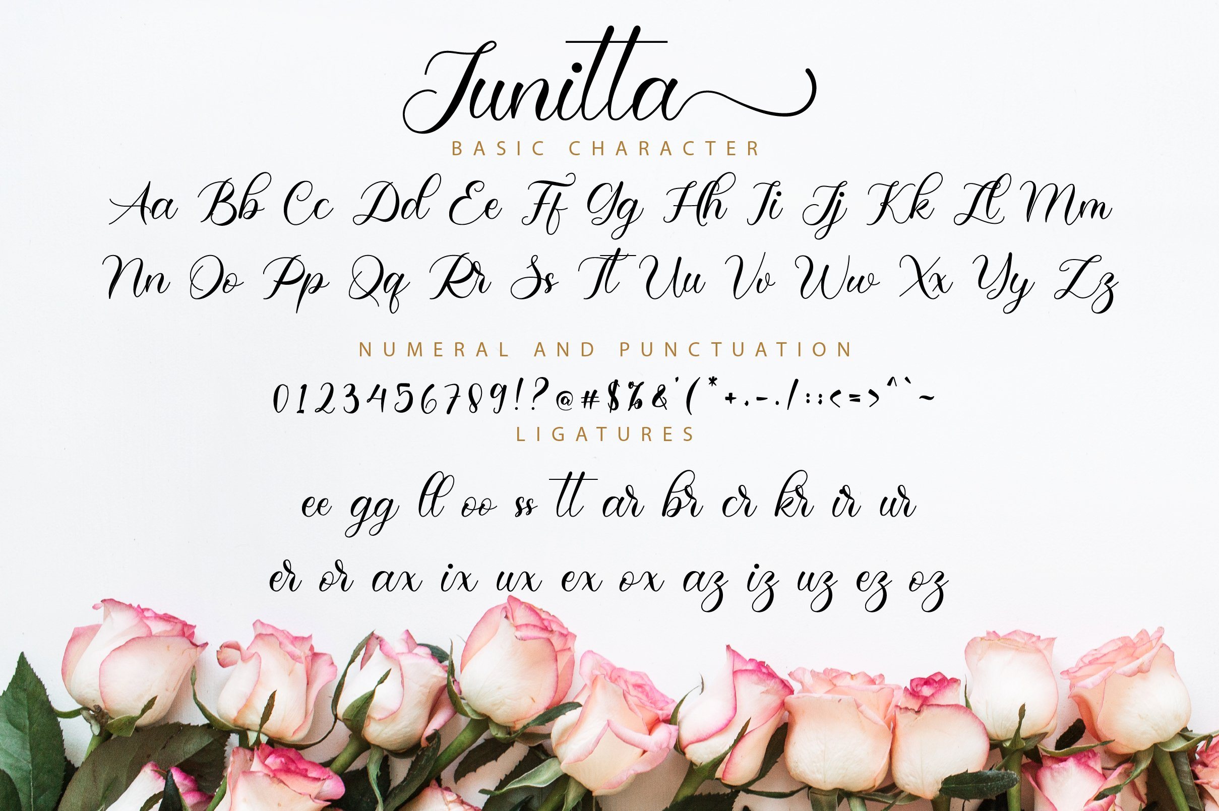 Junitta Script example image 11