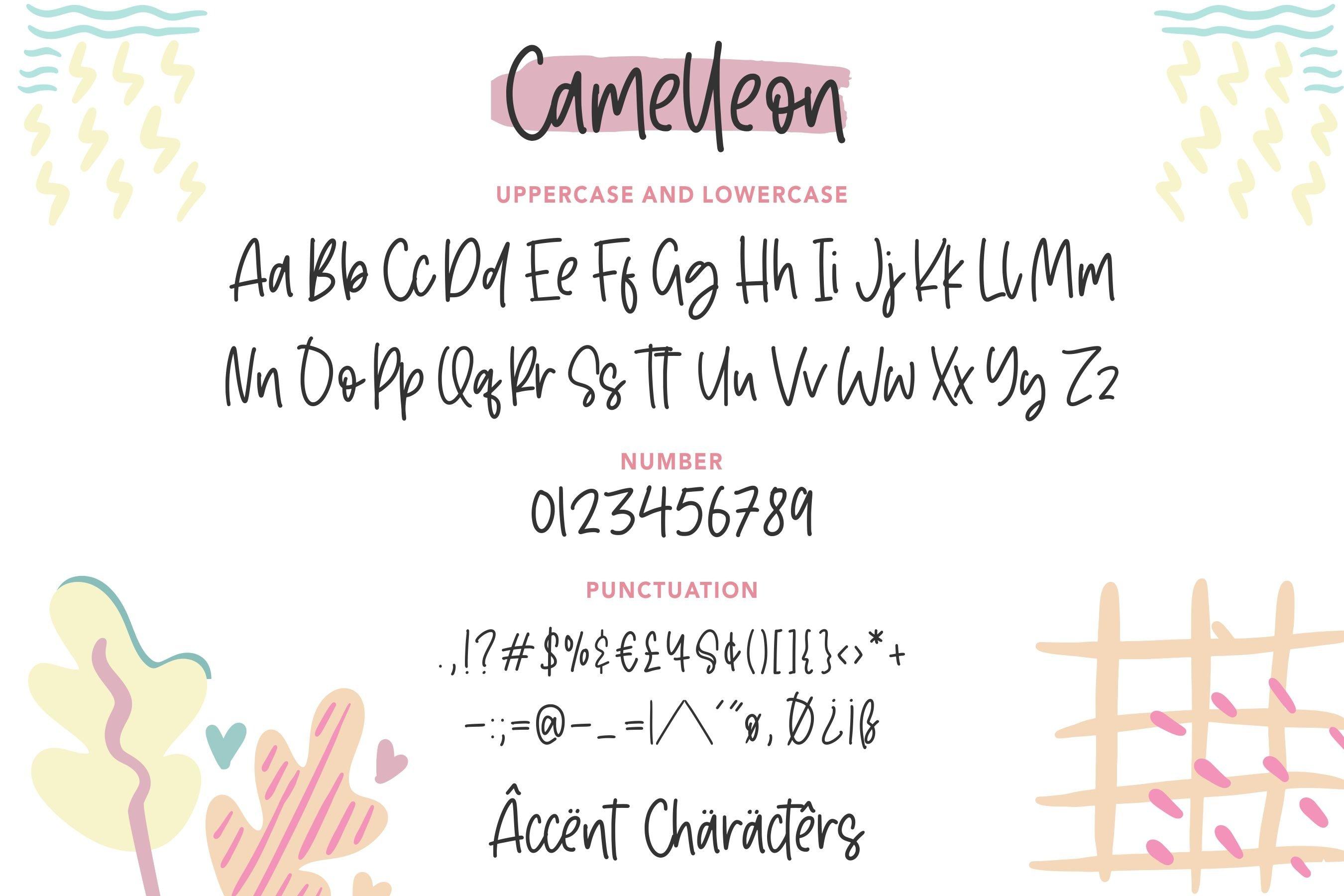 Camelleon Monoline Handwritten Font example image 6