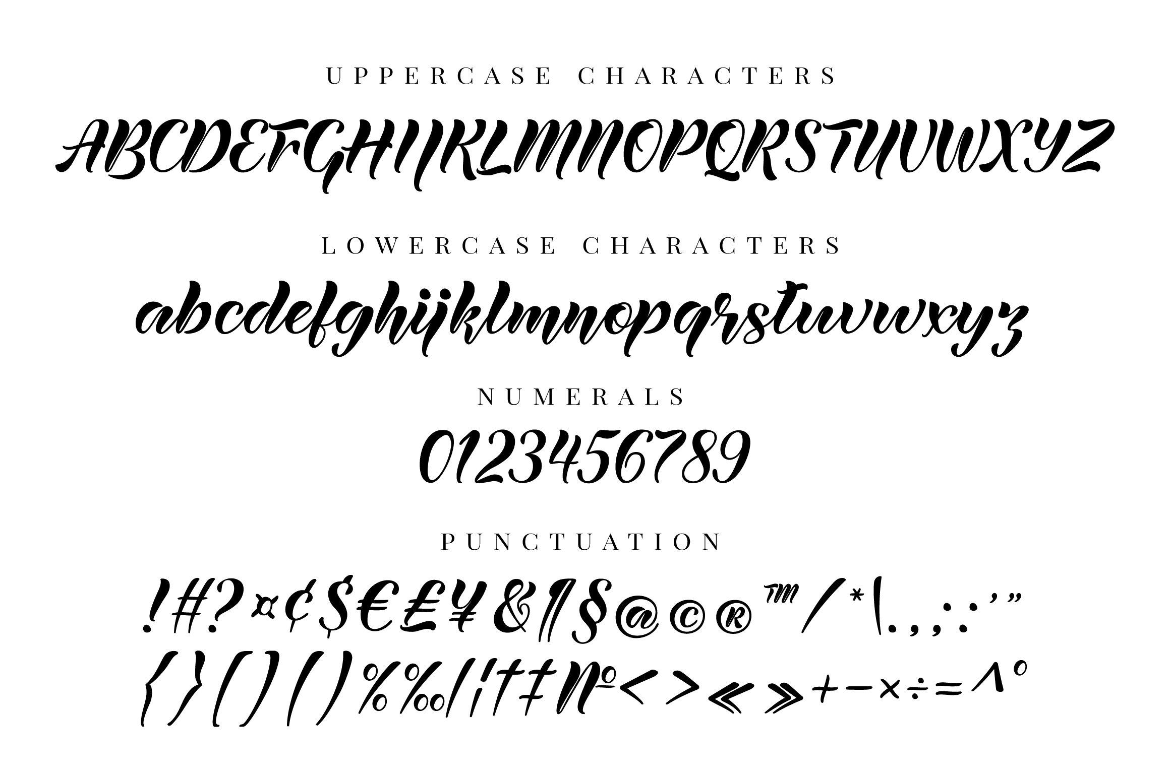 Lanikai - calligraphy script font example image 8