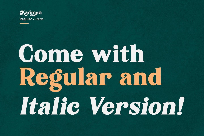 Karimun - Modern Serif Font example image 7