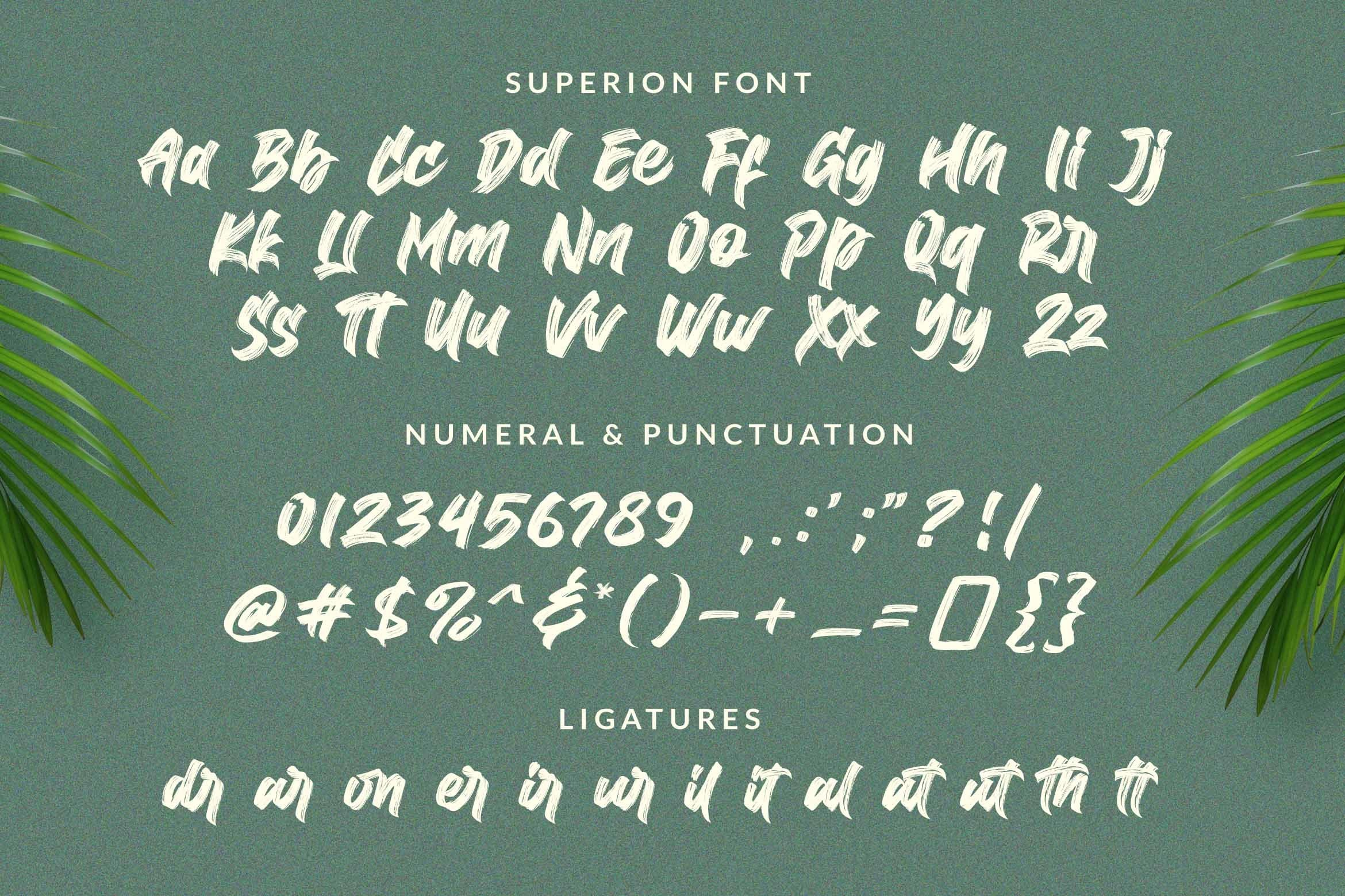 Superion / Brush Font example image 4