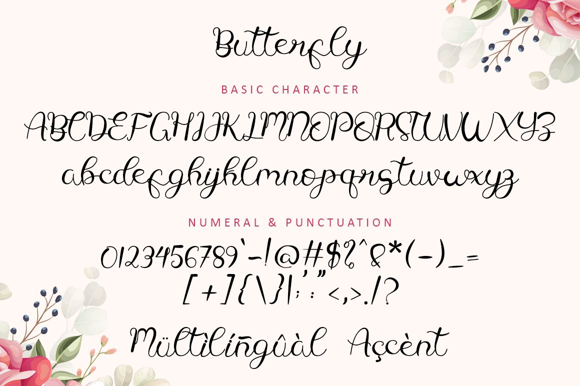 Butterfly - Modern Calligraphy example image 8