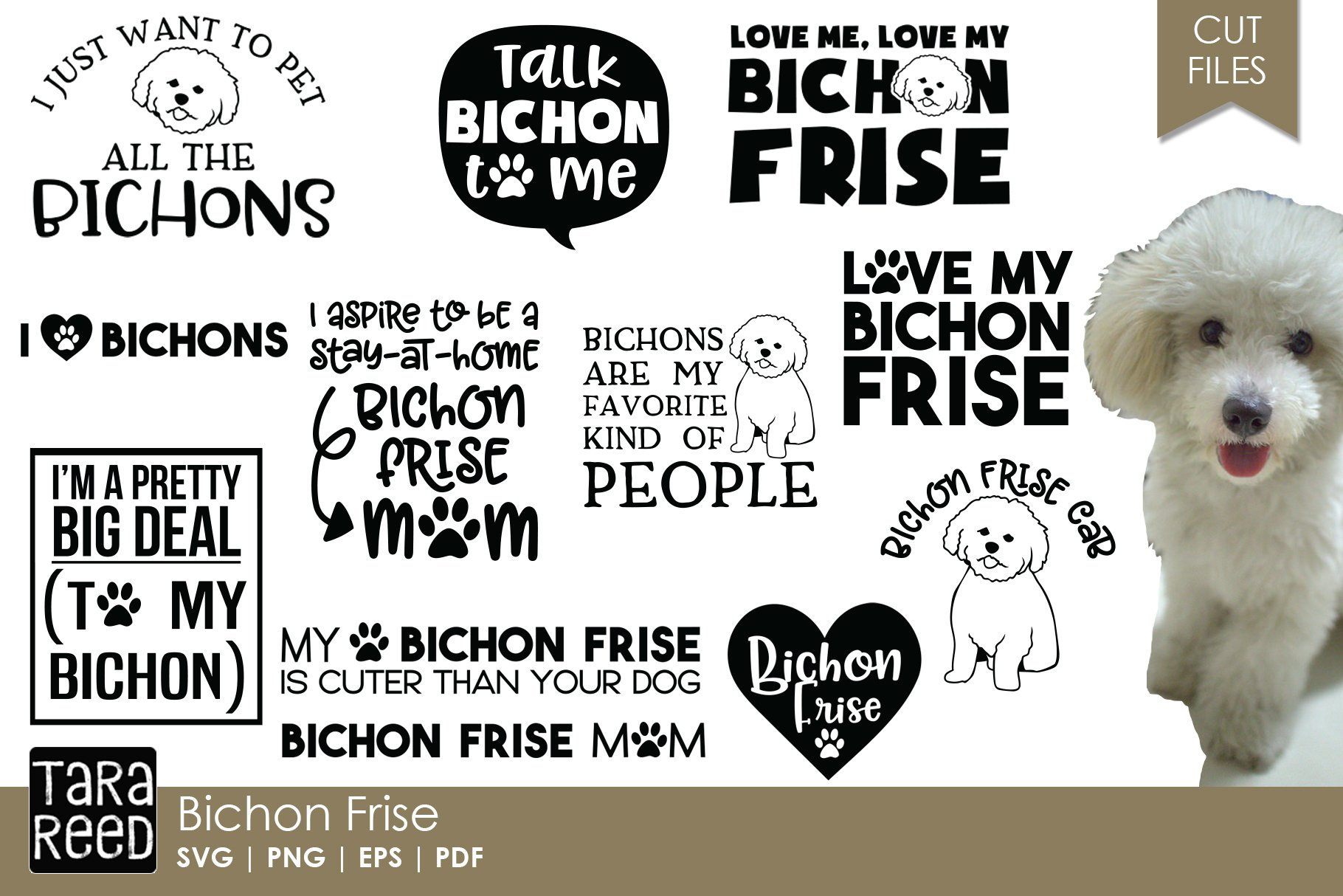 Bichon Frise Dog Breed Svg And Cut Files For Crafters 212957 Cut Files Design Bundles